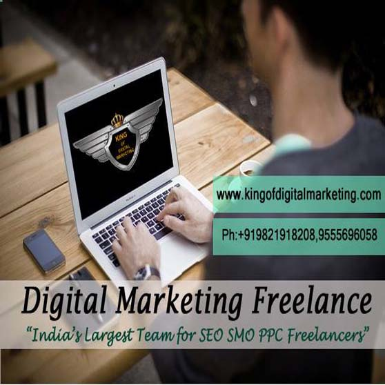 SEO Freelancer in india