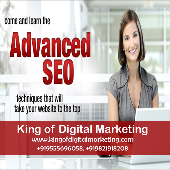 SEO Training in India Delhi